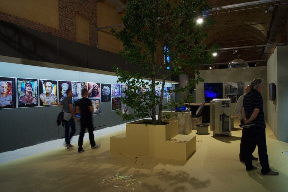 cremona-digitale-albero